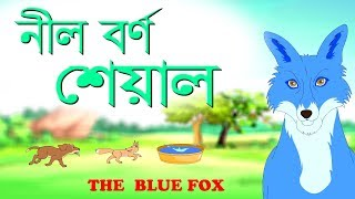 The Blue Jackal | The Blue Fox