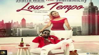 shatta wale ft  Shatta Michy - Low tempo Lyrics