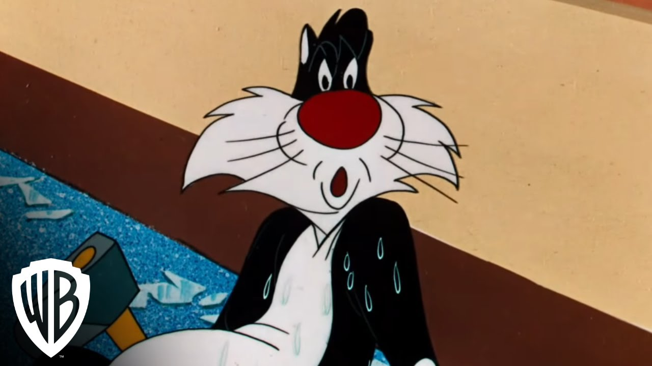 Looney Tunes Sylvester The Cat S Son