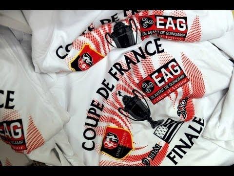 Rennes - Guingamp (finale de la Coupe de France 20