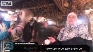 مصر العربية   الحمى القلاعية تثير الذعر بين أهالي منية سندوب بالدقهلية