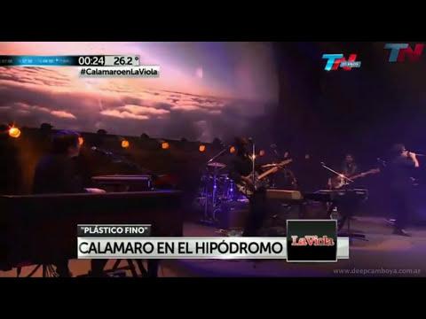 Plastico fino - Hipódromo Palermo 2013 - Andres Calamaro