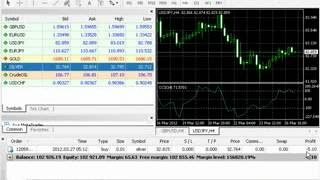 Forex in Urdu   YouTube