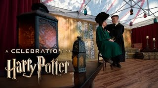 A Celebration of Harry Potter 2016 Highlights