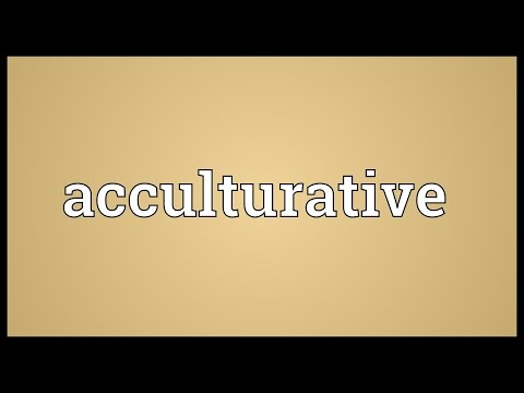 Header of Acculturative