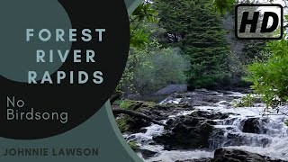 Nature Sounds of the Forest Without Birds Singing-Soothing Sound of Waterfall Relaxation