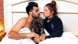 I Have The Craziest Dog | Hannah Stocking
