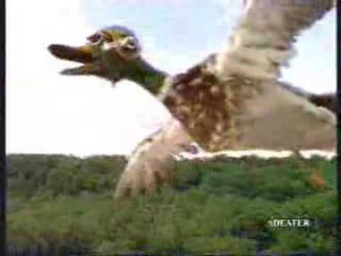 Funny Commercial - Ducks Revenge