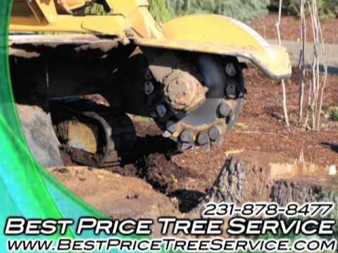 Best Price Tree Service, Manton, MI