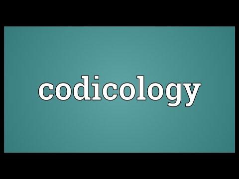 Header of codicology