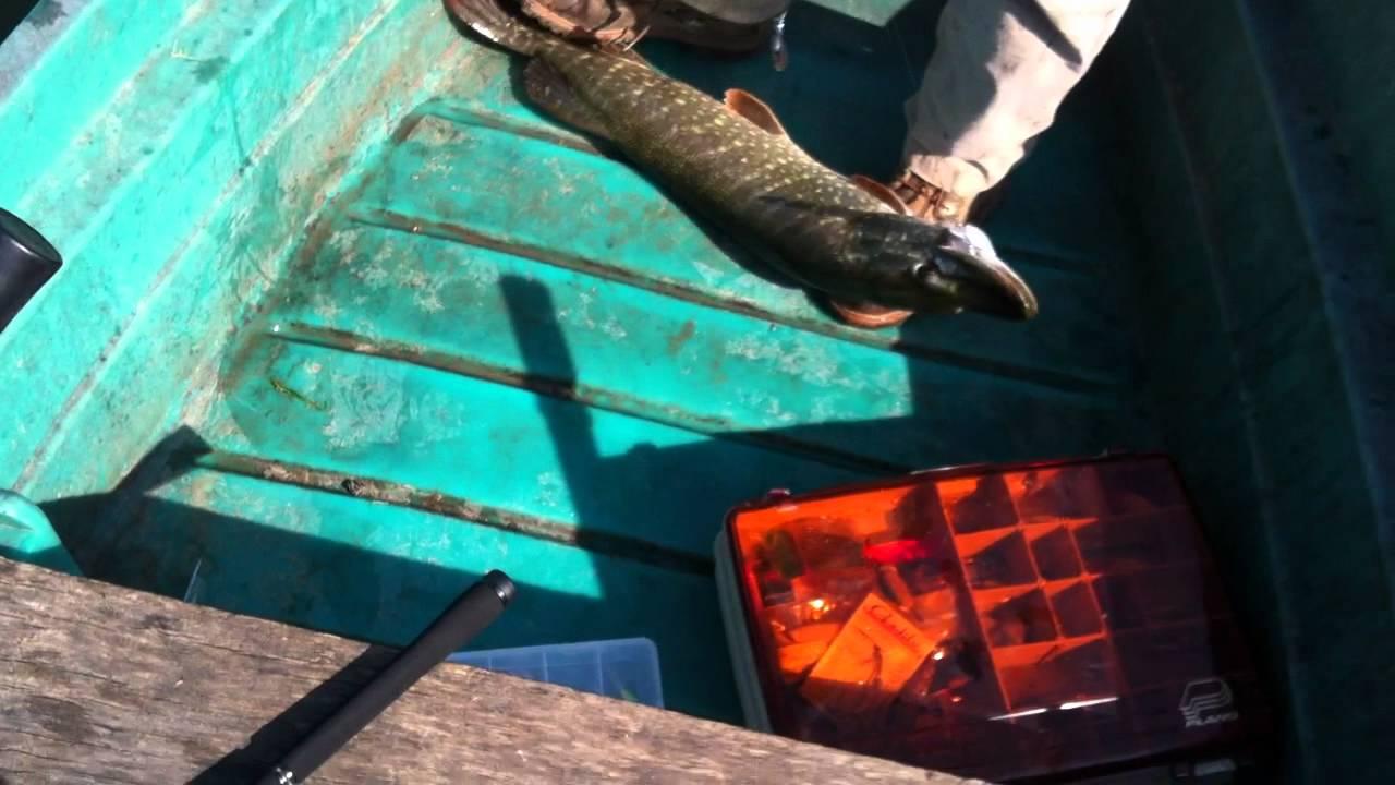 La pêche à khakasii sur noir ijuse