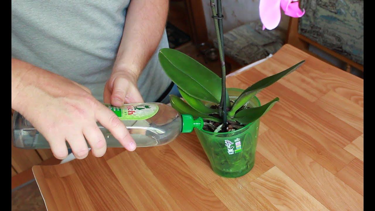 Как сажают ваз 2106