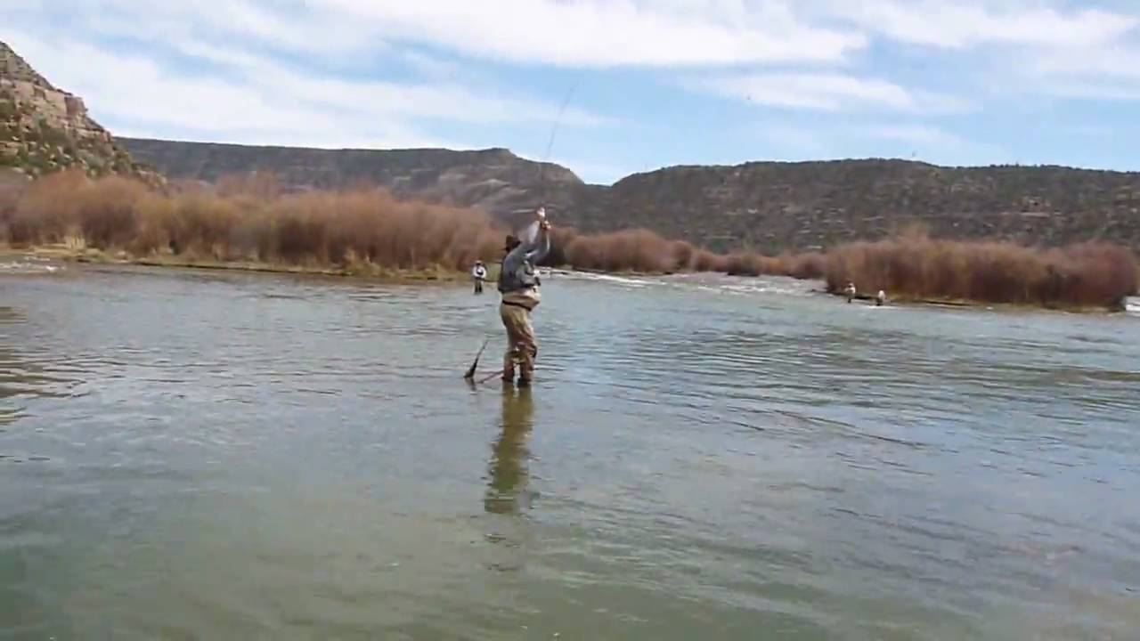 Dry fly fishing texas hole san juan double hookup for San juan fly fishing