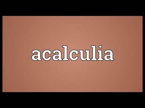 Header of acalculia