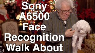 Sony A6500 Face Recognition Experience