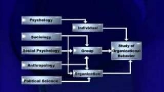 MGT502 Organizational Behaviour