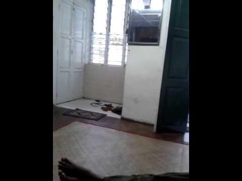 Drchatgyi video