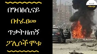 ETHIOPIA - The attack killed nine police officers in Egypt