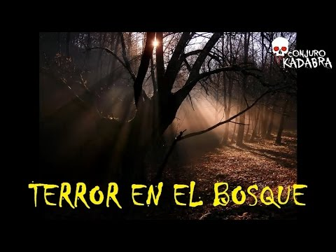 Historias de terror reales - 3ª Temporada - (Loquendo, Parte 16)