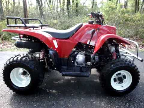 2005 BAJA MOTORSPORTS 250 WILDERNESS ATV - 4 SALE ON EBAY 5/2009