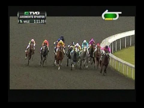 2013 Spinster Stakes - Emollient