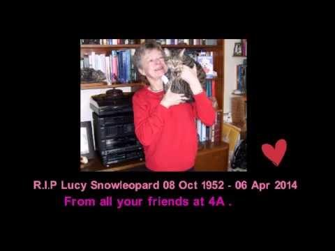 Rip Lucy Snowleopard Xxx video