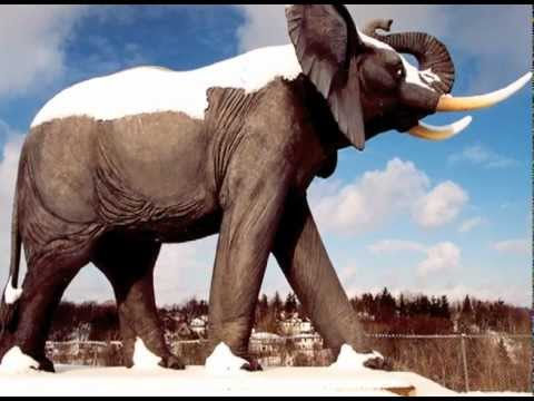 Jumbo the Circus Elephant 3 - Short Story, Song, Images, Commentary