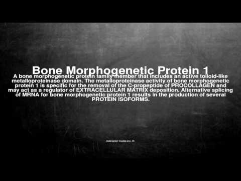 Medical vocabulary: What does Bone Morphogenetic Protein 1 mean
