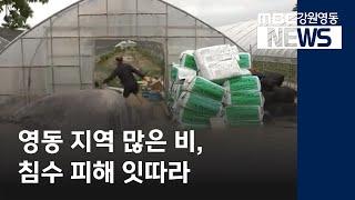 최종R)영동 지역 많은 비, 침수 피해 잇따라