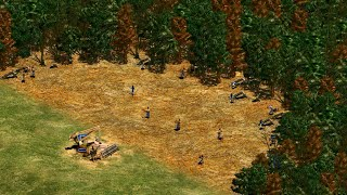AoE2 Lumber Camp Math