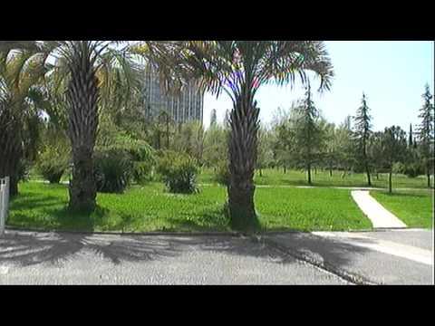 Адлер отдых  — гостиница Арли-Курортный городок.