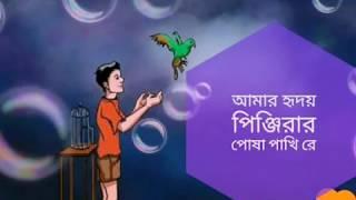 হ্রিদয়ের পোশা পাখিরে, আমারে কান্দায়া পাওকি শুখ??? bangla song, koster song 2017,