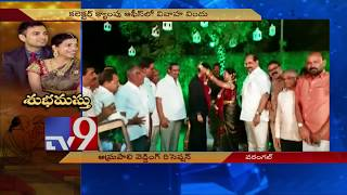Collector Amrapali couple wedding reception in Warangal