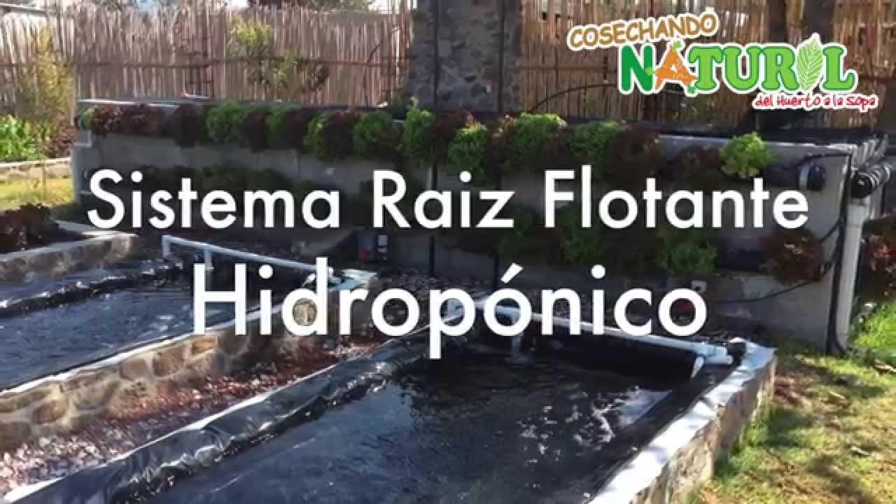 Second Nature Hidroponía