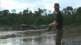 Fishing the Peruvian Amazon, Project Payara - Freshwater Fishing