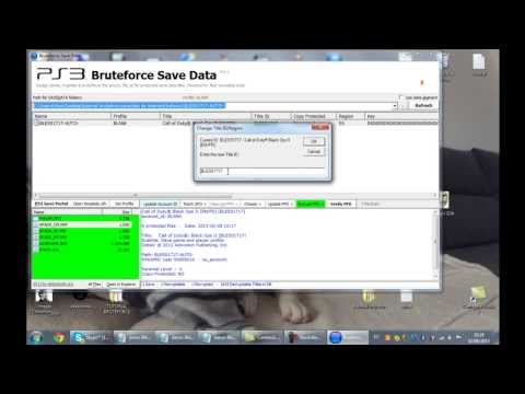 tutorial ps3 bruteforce save data
