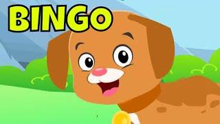 Bingo Song | Bingo Dog Song for Kids