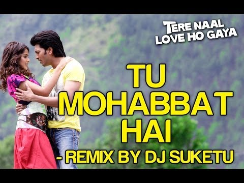 Tu Mohabbat Hai Remix - Tere Naal Love Ho Gaya | Riteish & Genelia | Atif Aslam & Others video