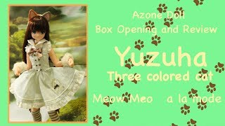 Doll Box Opening and Review: Yuzuha Three Colored Cat, Meow Meow a la mode