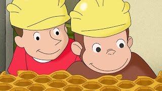 Jorge el Curioso   Un Mono Apicultor   Dibujos animados para niños   WildBrain