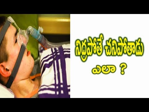 telugu facts | latest telugu facts | telugu secret book
