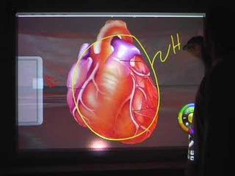 Edusim Anatomy World - 3D on your interactive whiteboard