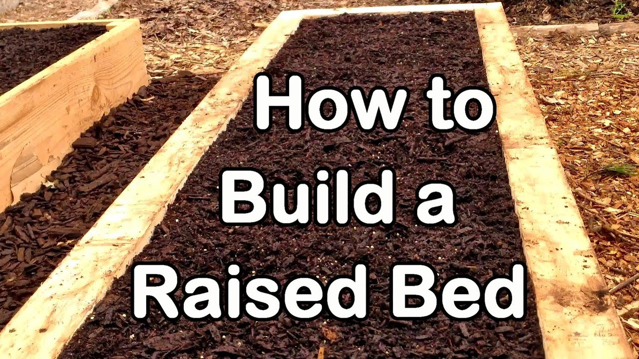 How To Build A Raised Garden Bed With Wood Easy Ez