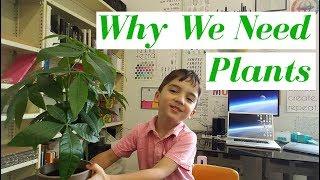 Oxygen vs. Carbon Dioxide for Kids (a.k.a. Why We Love Plants)