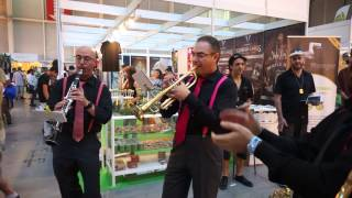 Expogrow 2014: Dixieland Jazz Band at The Sublimator Booth