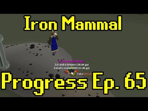 Oldschool Runescape - 2007 Iron Man Progress Ep. 65 | Iron Mammal