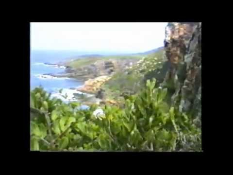 Botany Bay to Broughton Island on Shockwave 37 Catamaran GROWLER 1995a