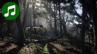 RED DEAD REDEMPTION 2 Ambient Music & Ambience 🎵 Day in the Woods (RDR2 Soundtrack | OST)