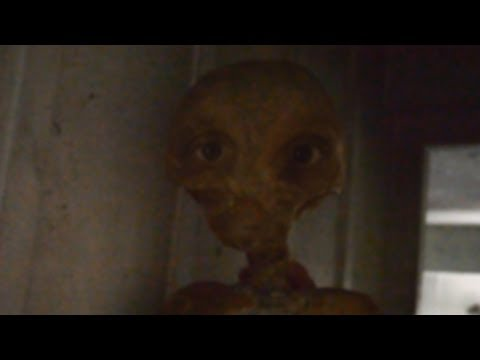 UFO Sightings Edward Snowden The Alien Connection Special Report! 2013