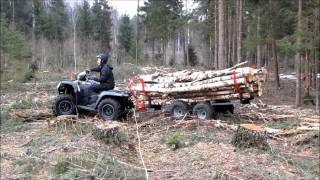 Iron Baltic Atv Timber Trailer